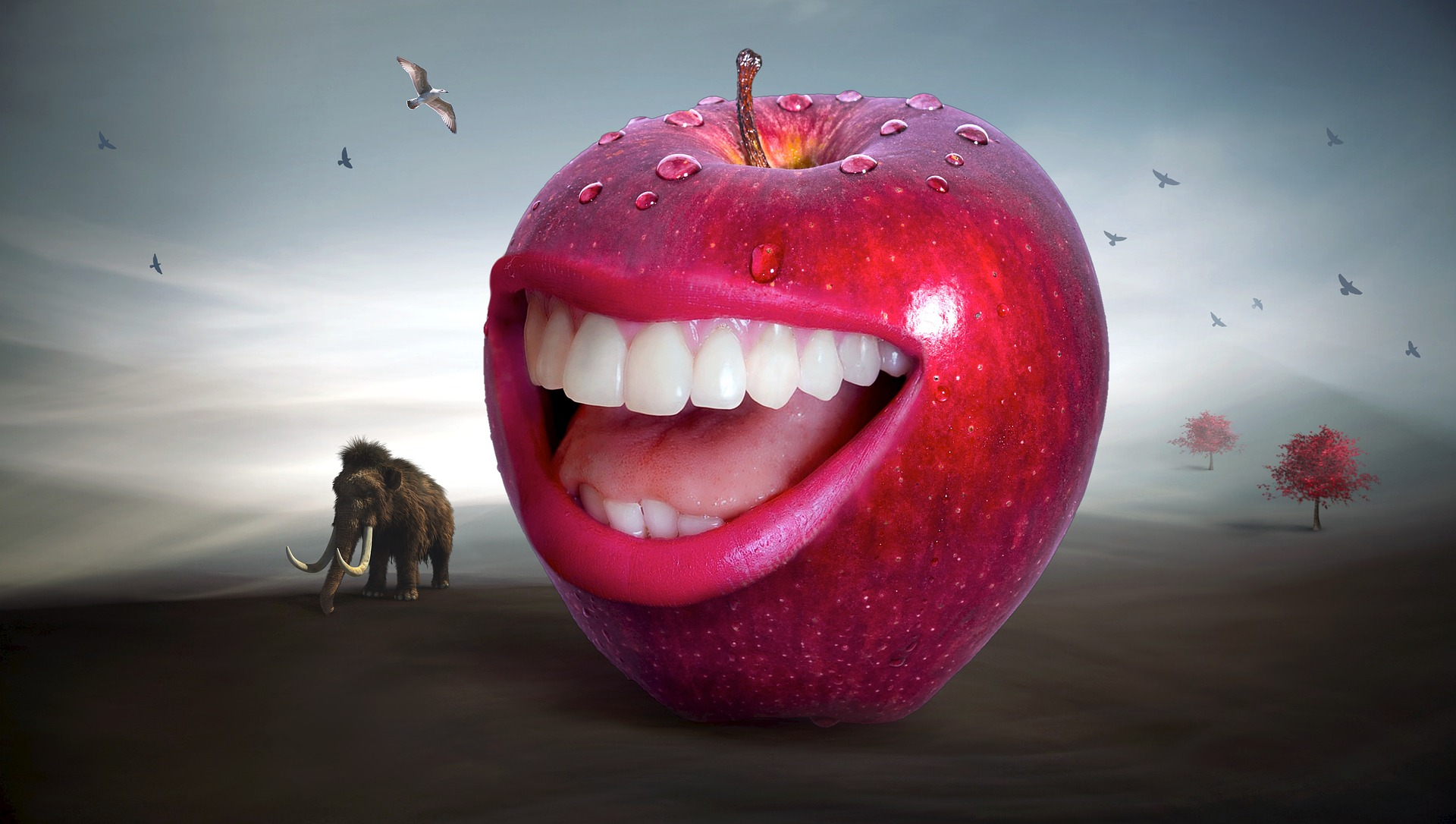 aplicare coroane dentare